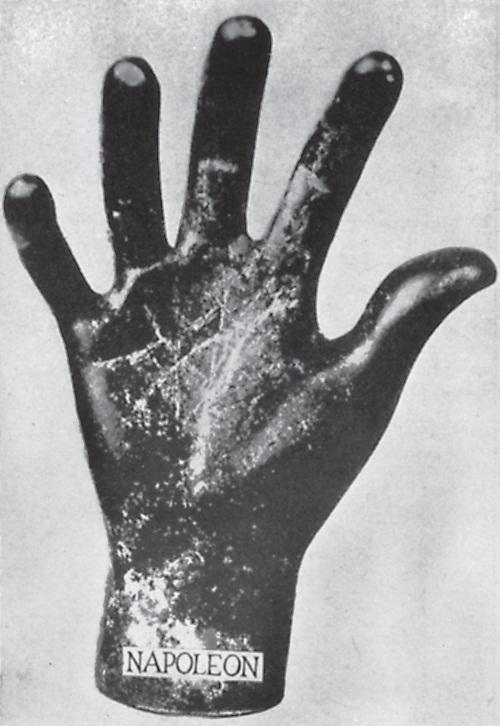 http://vsemagi.ru/files/images/Kist-pravoj-ruki-Napoleona.jpg