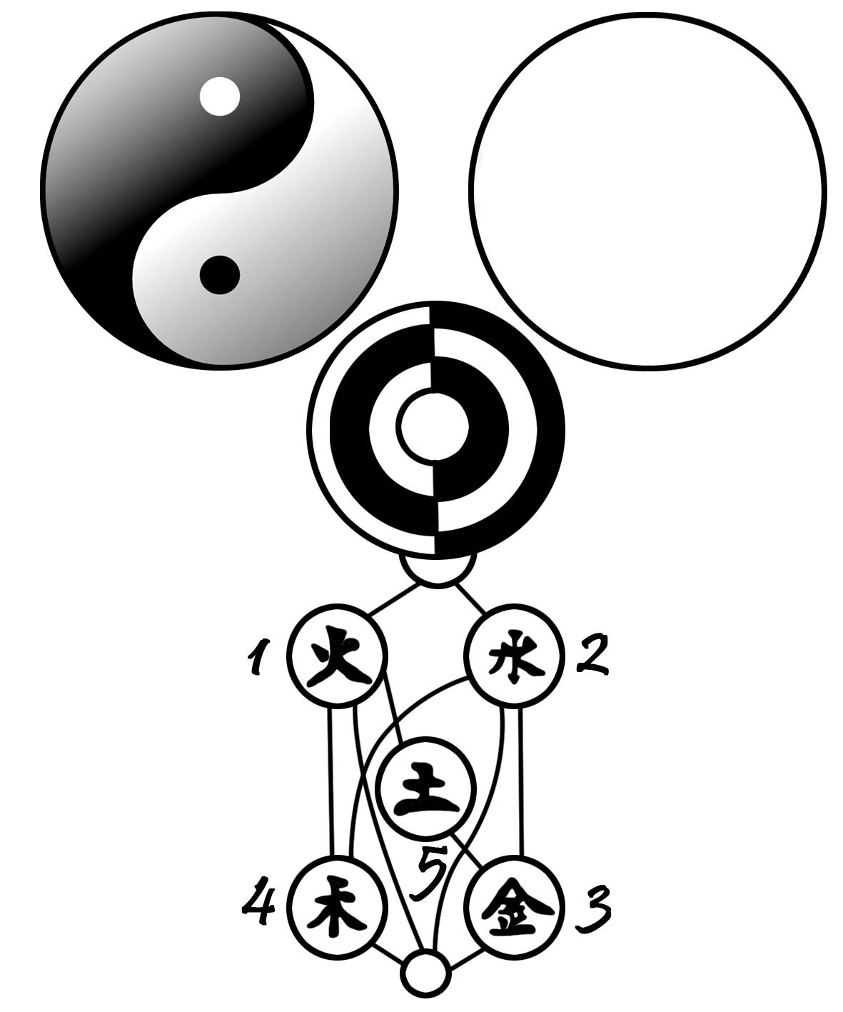 тибетский сбор для очищения организма противопоказания